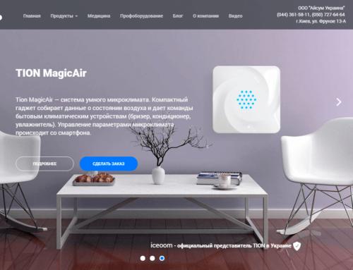 Продвижение интернет-магазина Iceoom